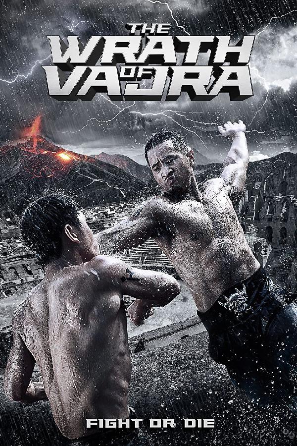 The Wrath of Vajra (2013)